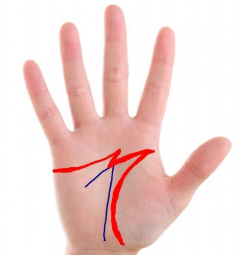 手相のラッキーM字線の見方と意味を画像で解説!最強と呼ばれる理由