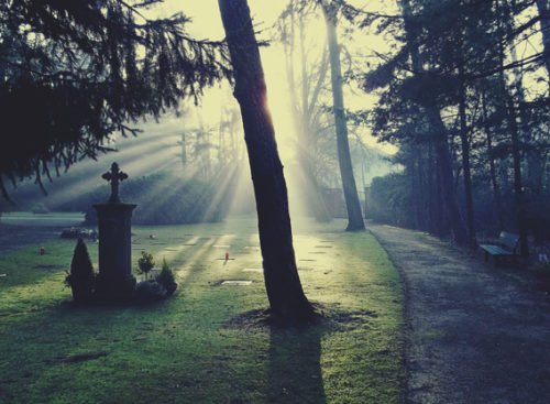 ◆夢占い◆友達が死ぬ夢は吉!理由を体験談と共に解説